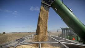 Minimize soybean harvest losses