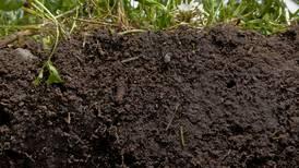 Economics of soil health: Study shows economic benefits of soil health practices