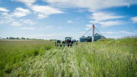 Indiana farmers set cover crop record