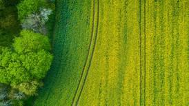 USDA survey finds cropland values increase