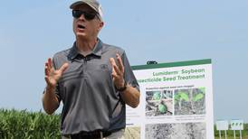 Lumiderm increases seedling vigor, insect protection