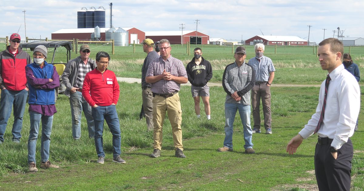 On-farm cover crop research finds answers - Agri News