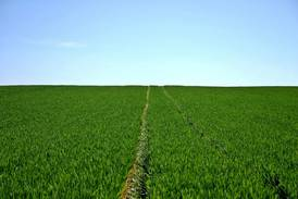 Survey finds 20% increase in farmland values