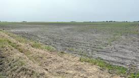 Illinois farmland prices remain steady