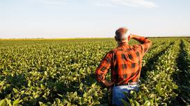 Producer survey near USDA yield projections