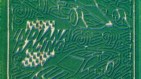 Exploration Acres features racing themed corn maze