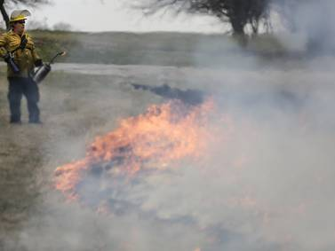 Southern Illinois prescribed fire training day