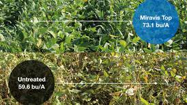 Fungicide holds the answer to soybean yield question